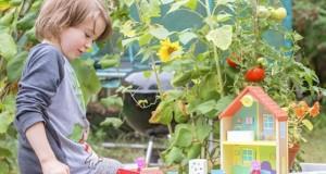 6 занимания с дървени играчки за развиване на креативността